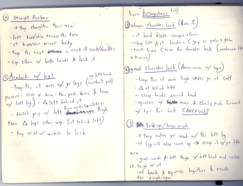 Brazilian jiu-jitsu techniques - notebook descriptions