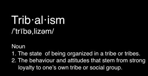 Problems with tribalism in Brazilian jiu-jitsu and society