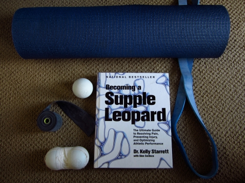 Supple-Leopard-for-BJJ-book-review